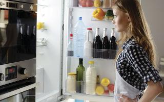 Какой тип холодильника выбрать домой