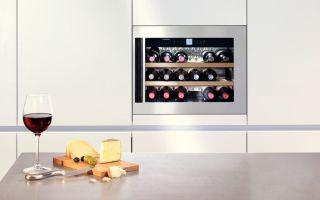 Обзор винных шкафов, холодильников: как выбрать